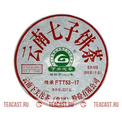 """Сягуань """"FTT53-17"""" - фото 6436"""