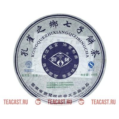Пу Вэнь «Кун Цюэ Чжи Сян» - фото 6451