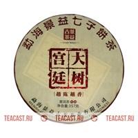 Цзин И Гу Ча «Да Шу Гунтин»